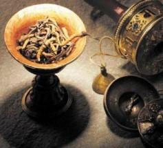 """KORDYCEPS  (Cordyceps Capsules) Nazywają go """"cudownym lekiem"""" - """"talizmanem""""- cena z kartą Tiens 185zł"""