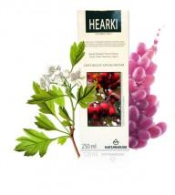 Hearki